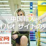 ≪中国輸入≫タオバオ サイトの見方