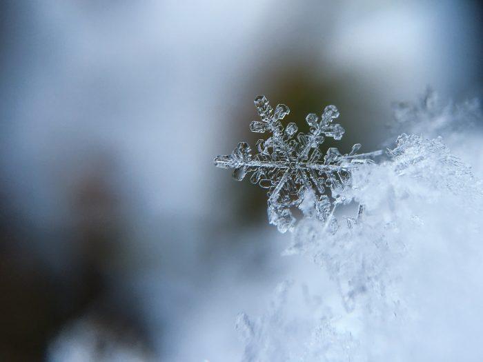 seasonal-items